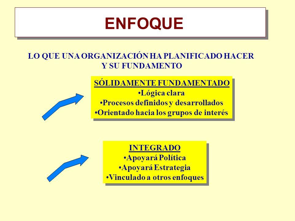 Resumen ENFOQUE LO QUE UNA ORGANIZACIÓN HA PLANIFICADO HACER Y SU FUNDAMENTO SÓLIDAMENTE FUNDAMENTADO Lógica clara Procesos definidos y desarrollados