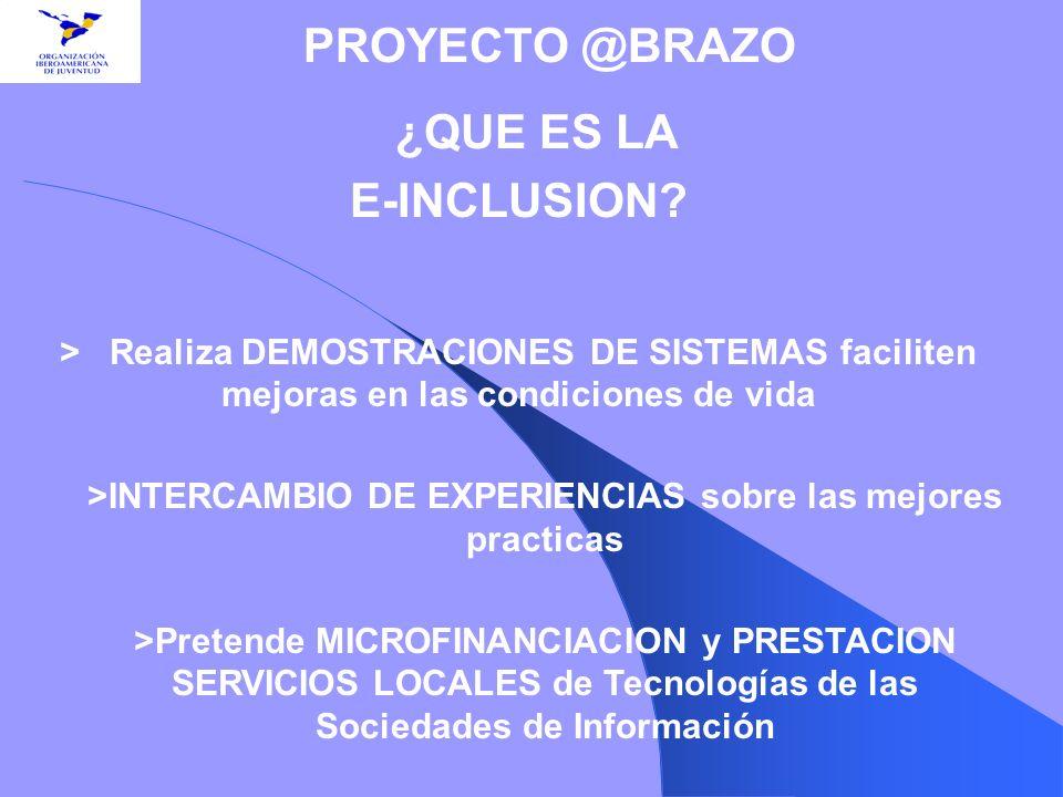 ¿QUE ES LA E-INCLUSION? > Realiza DEMOSTRACIONES DE SISTEMAS faciliten mejoras en las condiciones de vida >INTERCAMBIO DE EXPERIENCIAS sobre las mejor