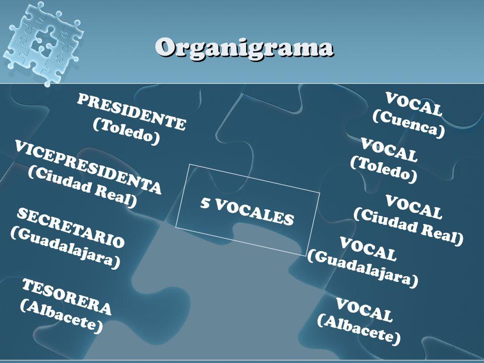 Organigrama PRESIDENTE (Toledo) VICEPRESIDENTA (Ciudad Real) SECRETARIO (Guadalajara) TESORERA (Albacete) 5 VOCALES VOCAL (Cuenca) VOCAL (Toledo) VOCA
