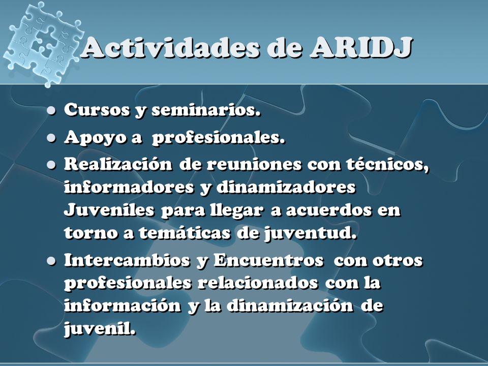 Actividades de ARIDJ Cursos y seminarios. Apoyo a profesionales. Realización de reuniones con técnicos, informadores y dinamizadores Juveniles para ll