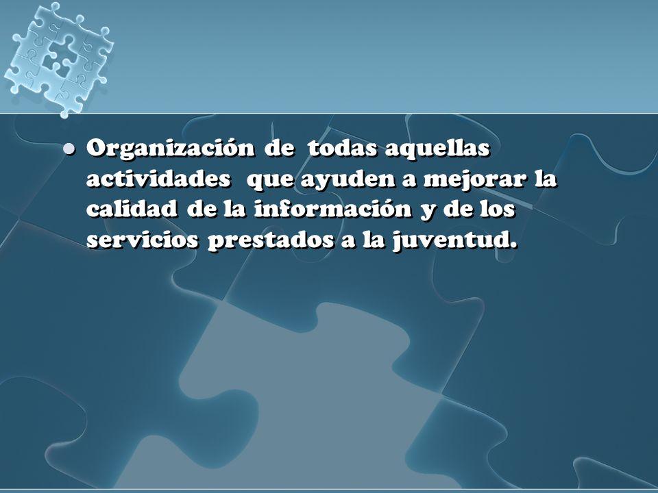 Organización de todas aquellas actividades que ayuden a mejorar la calidad de la información y de los servicios prestados a la juventud.