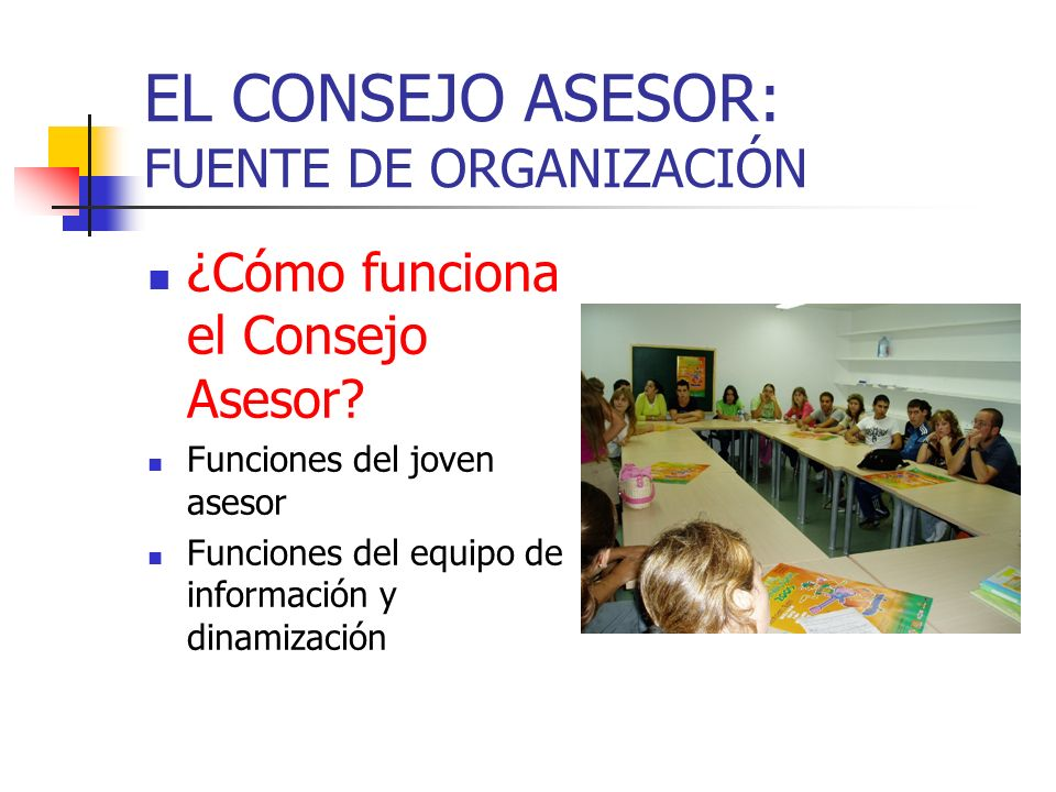 EL CONSEJO ASESOR: FUENTE DE ORGANIZACIÓN ¿Cómo funciona el Consejo Asesor.