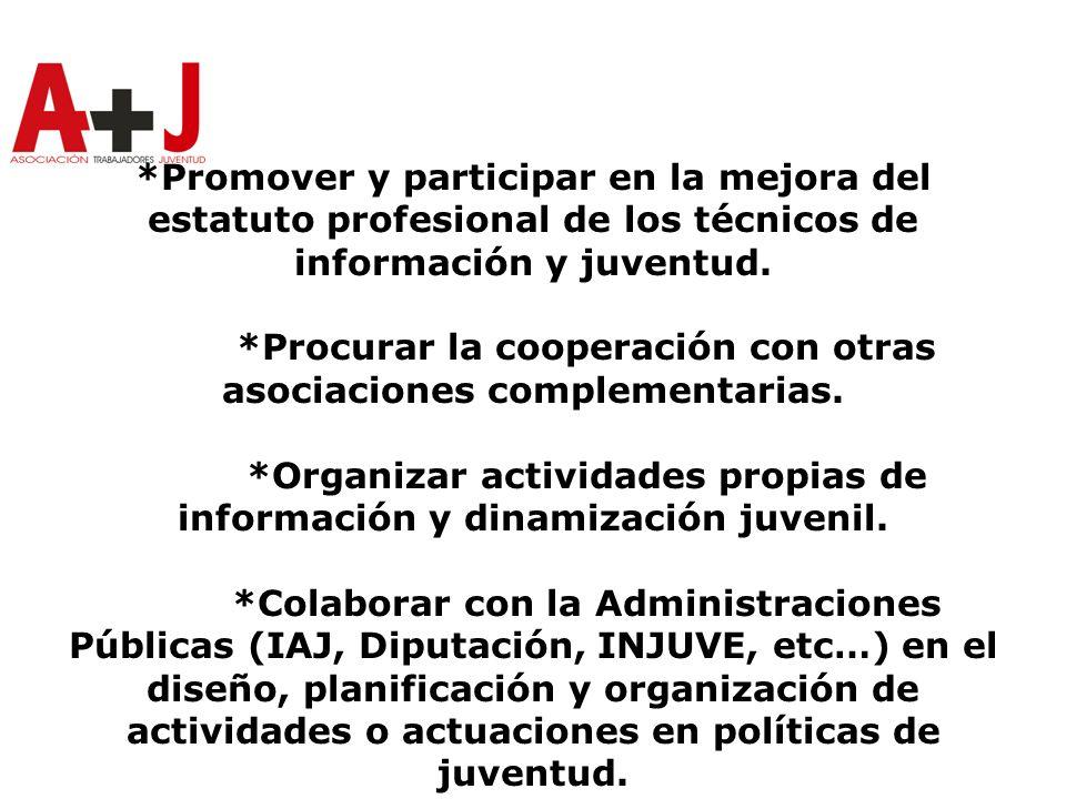 *Promover y participar en la mejora del estatuto profesional de los técnicos de información y juventud.