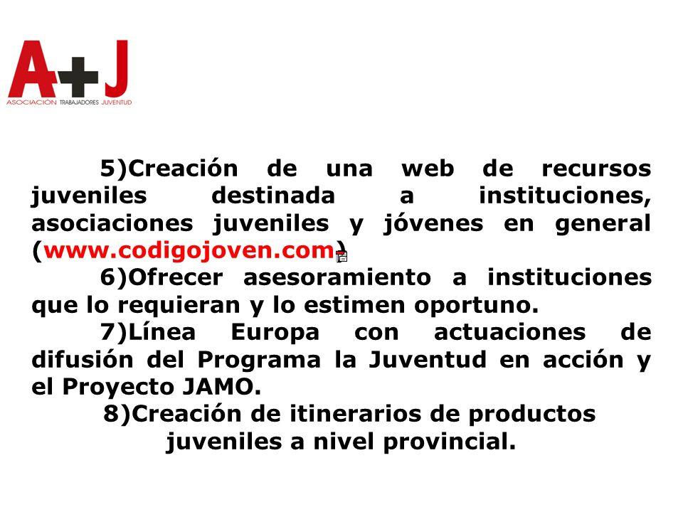 5)Creación de una web de recursos juveniles destinada a instituciones, asociaciones juveniles y jóvenes en general (www.codigojoven.com) 6)Ofrecer asesoramiento a instituciones que lo requieran y lo estimen oportuno.