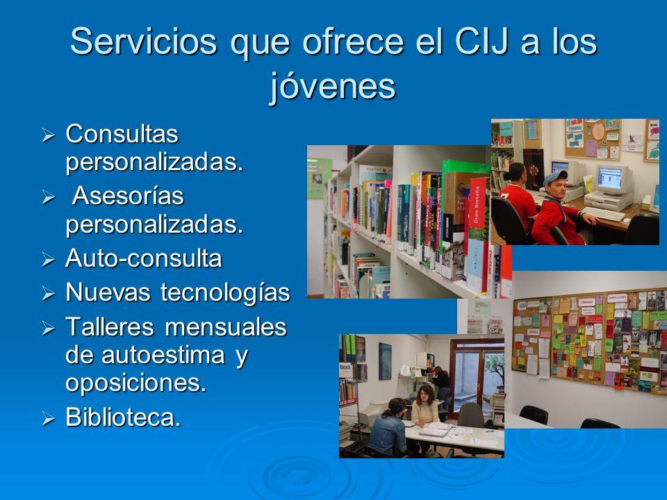 Servicios que ofrece el CIJ a los jóvenes Consultas personalizadas.