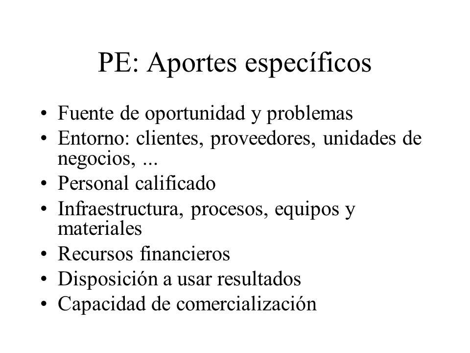 PE: Aportes específicos Fuente de oportunidad y problemas Entorno: clientes, proveedores, unidades de negocios,... Personal calificado Infraestructura