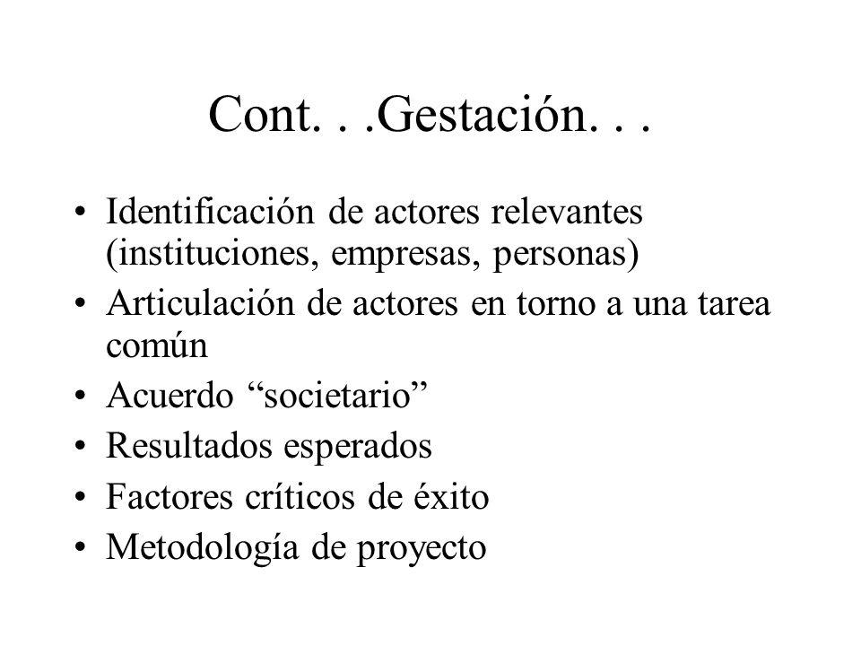 Cont...Gestación... Identificación de actores relevantes (instituciones, empresas, personas) Articulación de actores en torno a una tarea común Acuerd