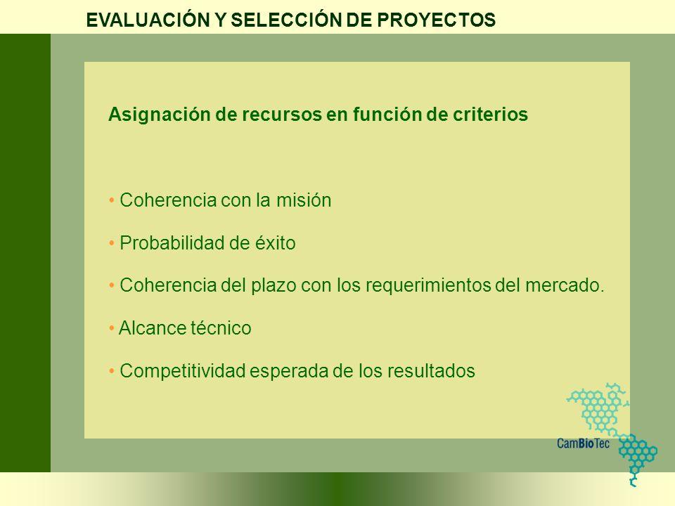 Asignación de recursos en función de criterios Coherencia con la misión Probabilidad de éxito Coherencia del plazo con los requerimientos del mercado.