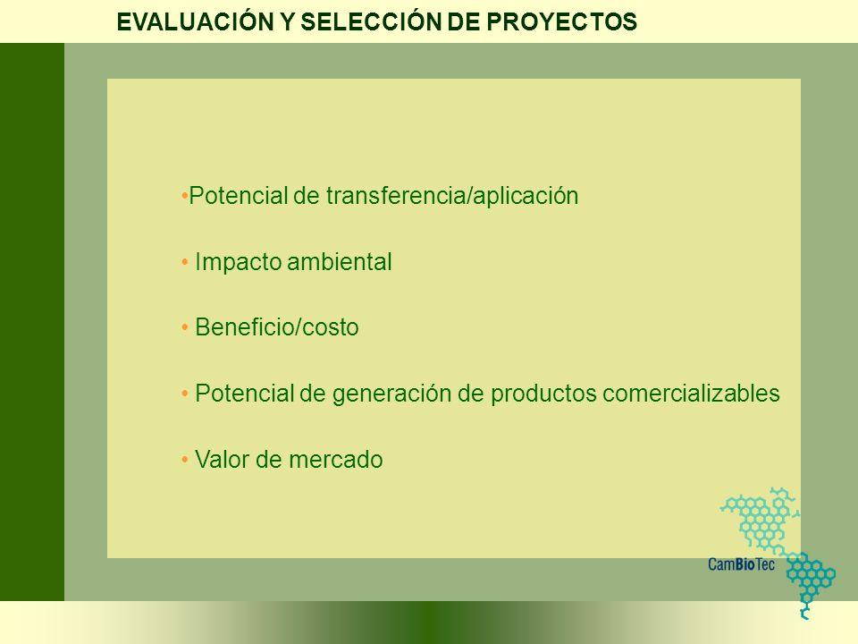 Potencial de transferencia/aplicación Impacto ambiental Beneficio/costo Potencial de generación de productos comercializables Valor de mercado EVALUAC