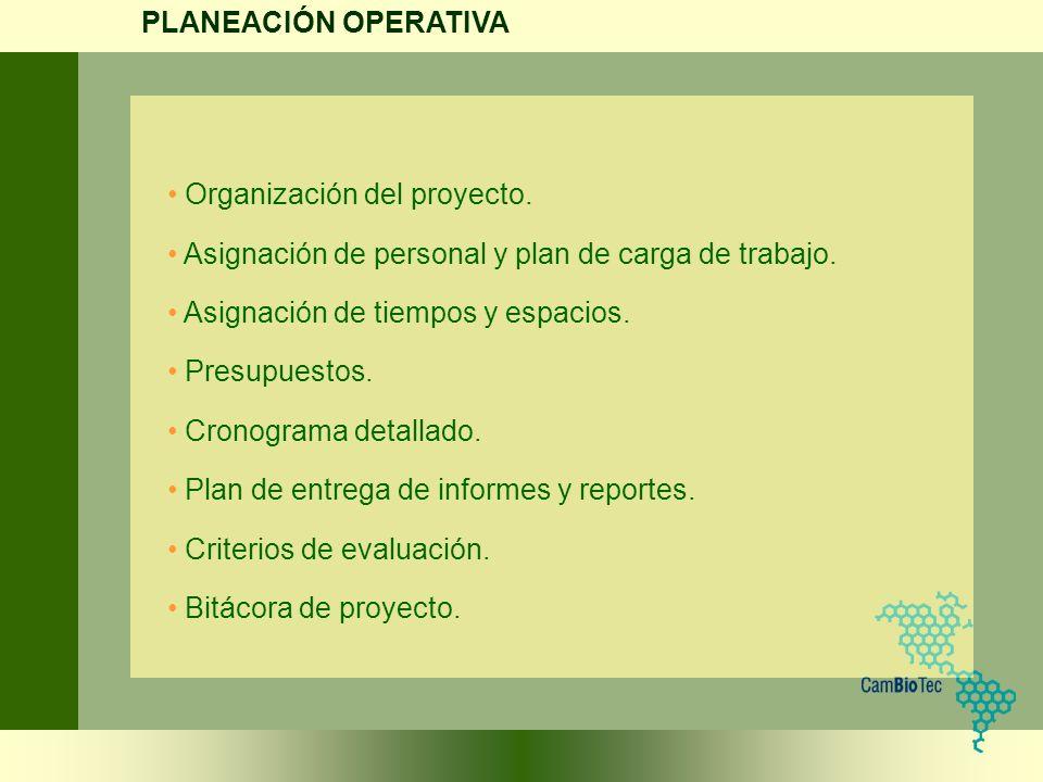 Organización del proyecto. Asignación de personal y plan de carga de trabajo. Asignación de tiempos y espacios. Presupuestos. Cronograma detallado. Pl