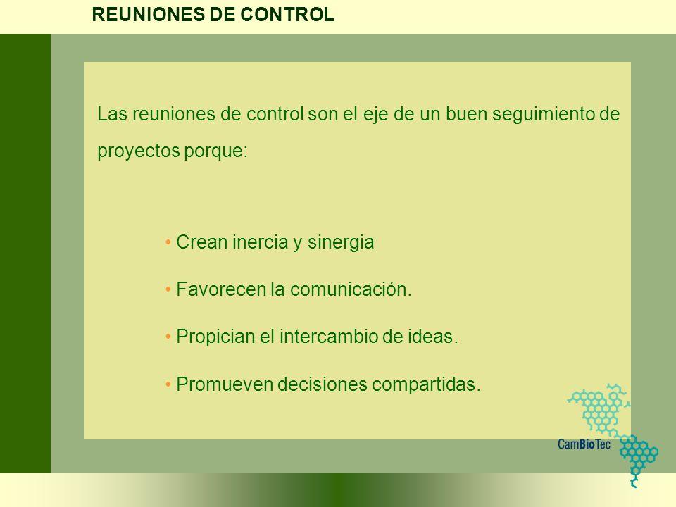 Las reuniones de control son el eje de un buen seguimiento de proyectos porque: Crean inercia y sinergia Favorecen la comunicación. Propician el inter