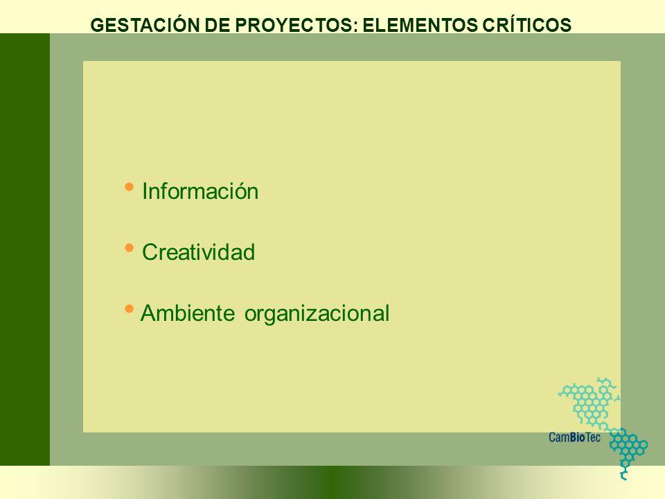 Información Creatividad Ambiente organizacional GESTACIÓN DE PROYECTOS: ELEMENTOS CRÍTICOS