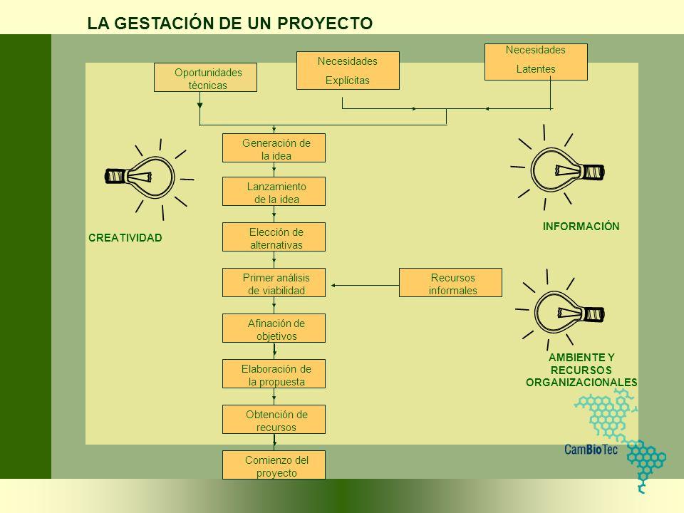 Generación de la idea Lanzamiento de la idea Elección de alternativas Primer análisis de viabilidad Afinación de objetivos Elaboración de la propuesta