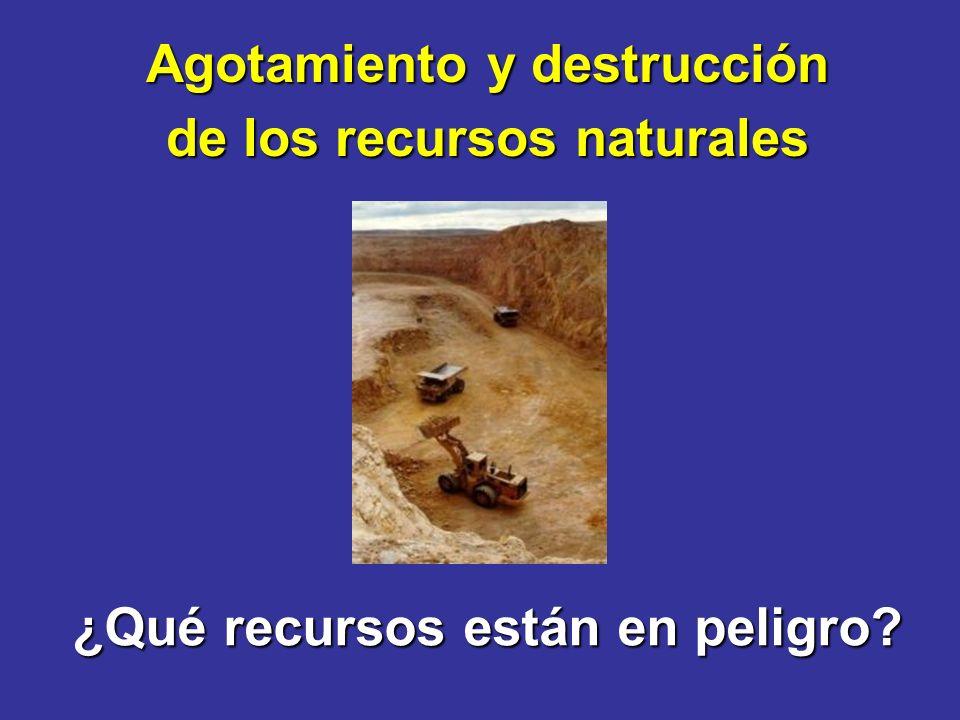 ¿Qué recursos están en peligro Agotamiento y destrucción de los recursos naturales