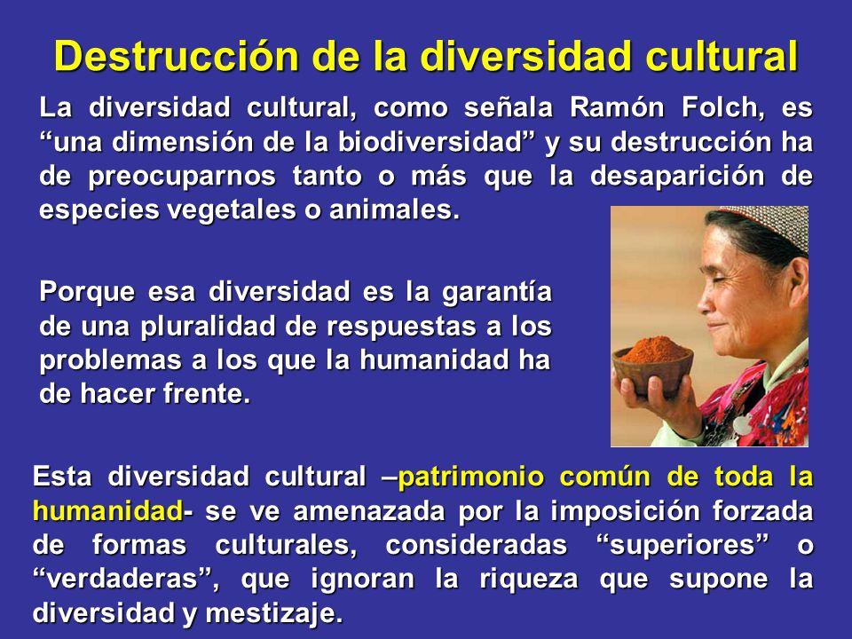 Destrucción de la diversidad cultural La diversidad cultural, como señala Ramón Folch, es una dimensión de la biodiversidad y su destrucción ha de preocuparnos tanto o más que la desaparición de especies vegetales o animales.