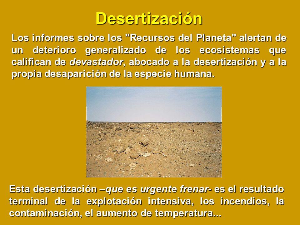 Desertización Los informes sobre los Recursos del Planeta alertan de un deterioro generalizado de los ecosistemas que califican de devastador, abocado a la desertización y a la propia desaparición de la especie humana.