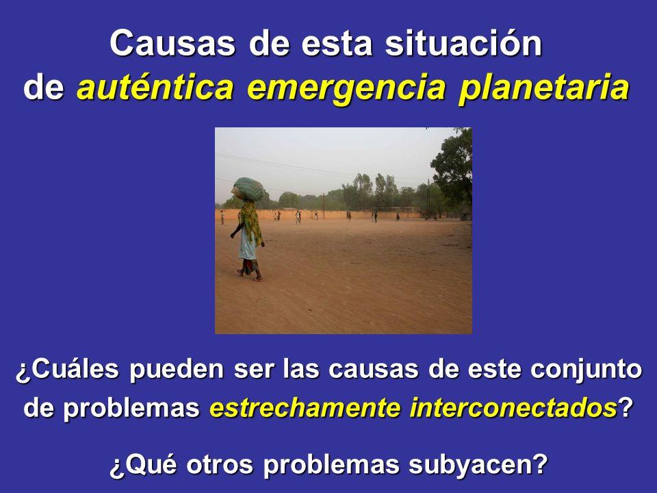 Causas de esta situación de auténtica emergencia planetaria ¿Cuáles pueden ser las causas de este conjunto de problemas estrechamente interconectados.
