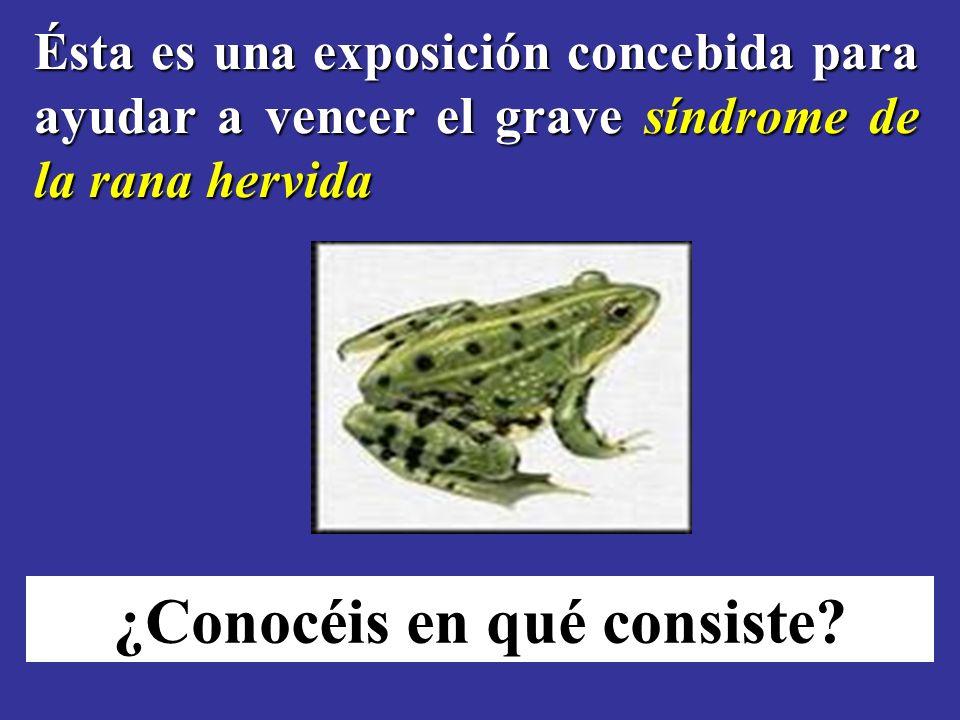 Ésta es una exposición concebida para ayudar a vencer el grave síndrome de la rana hervida ¿Conocéis en qué consiste
