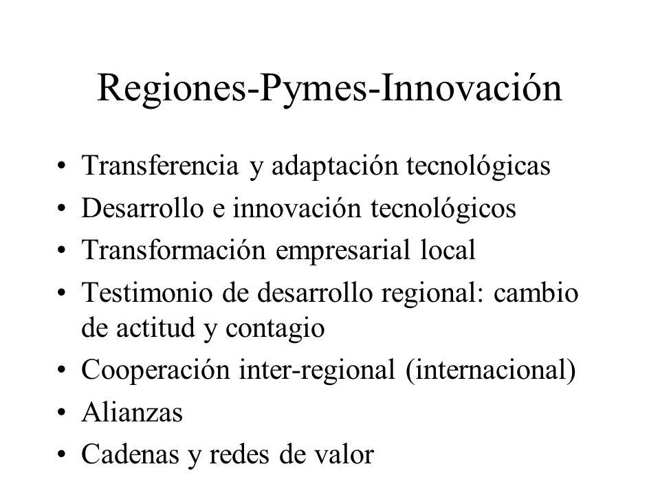 Regiones-Pymes-Innovación Transferencia y adaptación tecnológicas Desarrollo e innovación tecnológicos Transformación empresarial local Testimonio de
