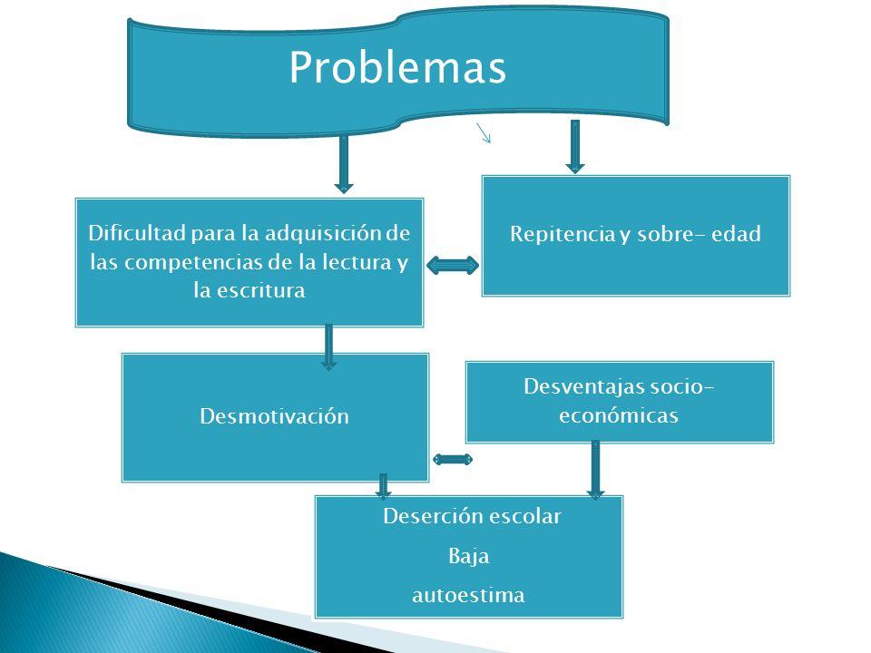 Dificultad para la adquisición de las competencias de la lectura y la escritura Repitencia y sobre- edad Desmotivación Desventajas socio- económicas D
