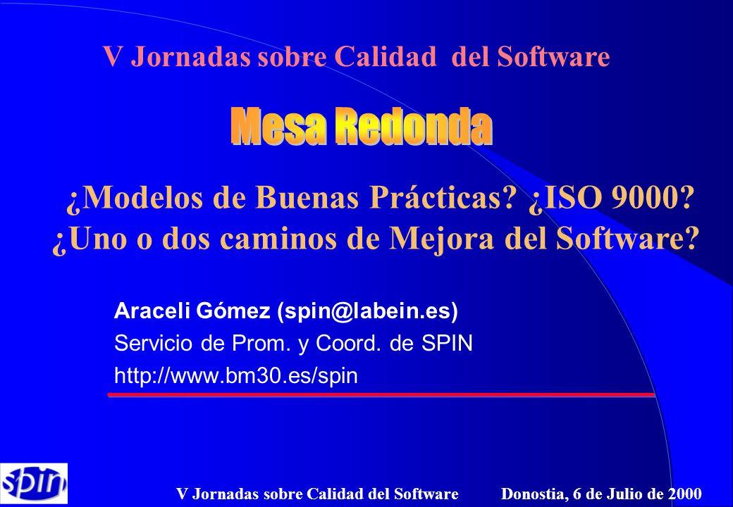 V Jornadas sobre Calidad del Software Donostia, 6 de Julio de 2000 Araceli Gómez (spin@labein.es) Servicio de Prom. y Coord. de SPIN http://www.bm30.e
