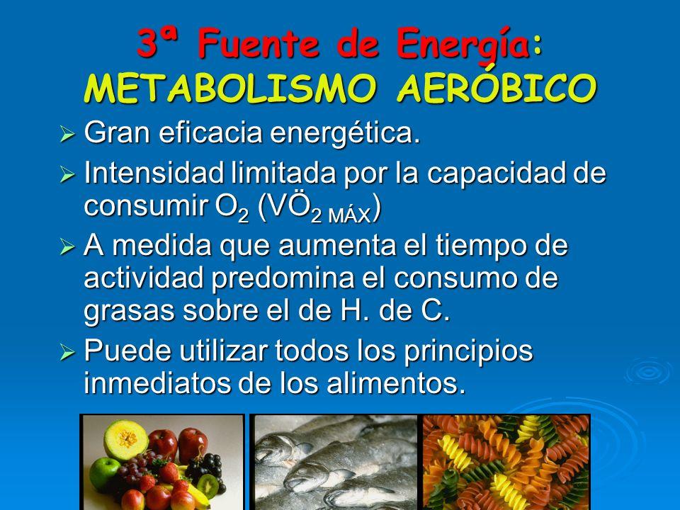 OBTENCIÓN DE ENERGÍA POR EL MÚSCULO SEGUNDA FUENTE DE ENERGÍA El Fosfato de Creatina (en el músculo) El Fosfato de Creatina (en el músculo) ADP + CP =