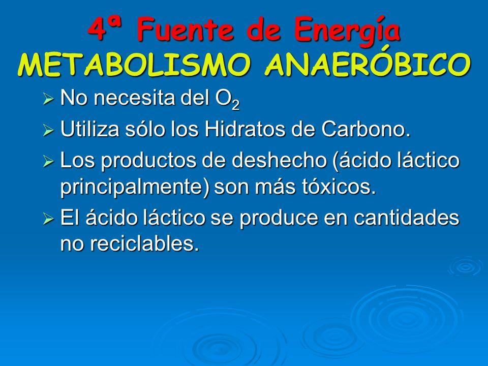 METABOLISMOAERÓBICO H. DE CARBONO OXÍGENO GRASAS ATP ADP + P CO2 Y H20 PROTEÍNAS