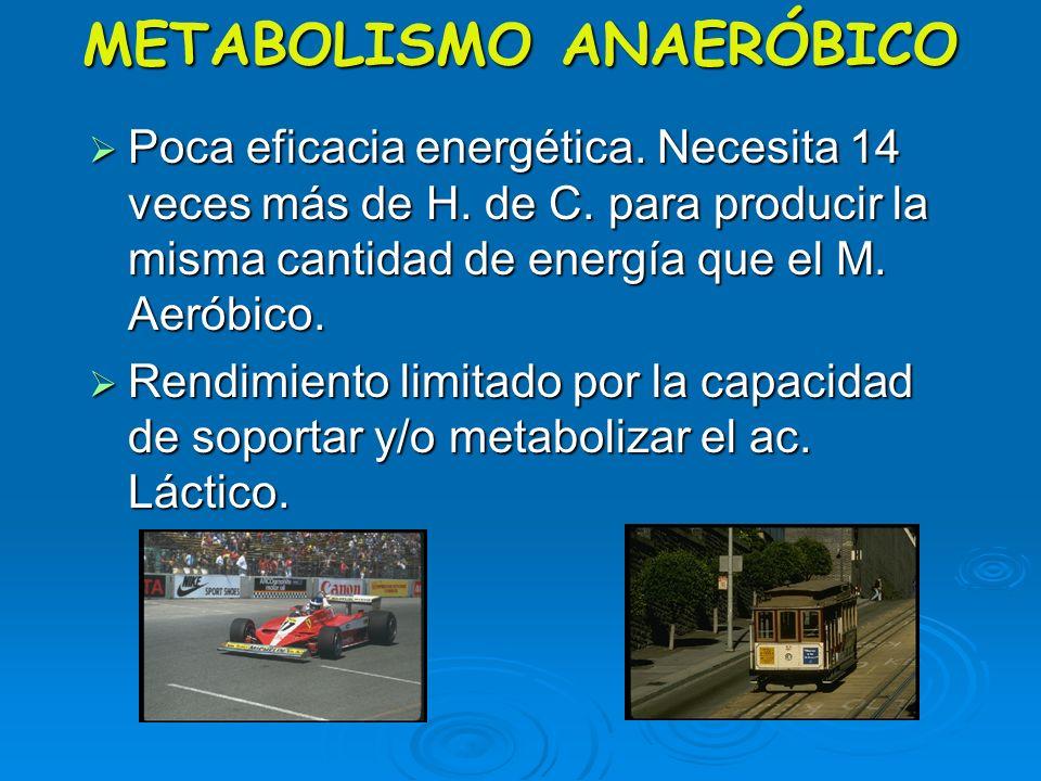 4ª Fuente de Energía METABOLISMO ANAERÓBICO No necesita del O 2 No necesita del O 2 Utiliza sólo los Hidratos de Carbono. Utiliza sólo los Hidratos de
