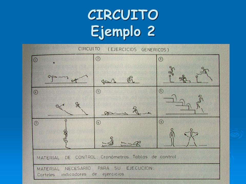CIRCUITO EJEMPLO 1