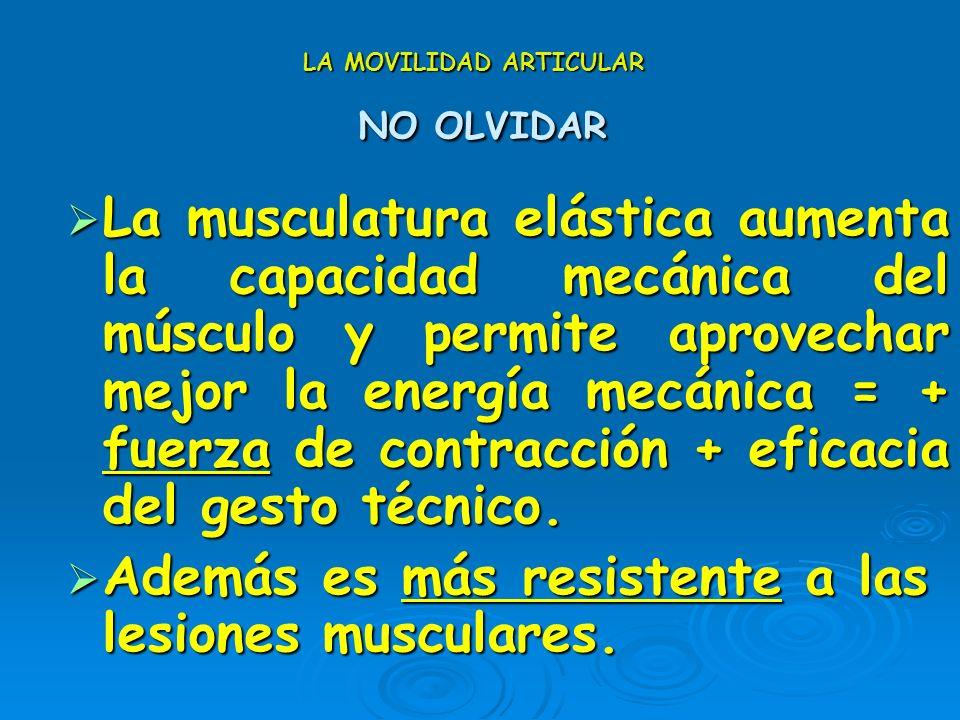 LA MOVILIDAD ARTICULAR MÉTODOS ESTÁTICOS Facilitación Neuromuscular Propioceptiva Facilitación Neuromuscular Propioceptiva 1. Estiramiento del grupo m