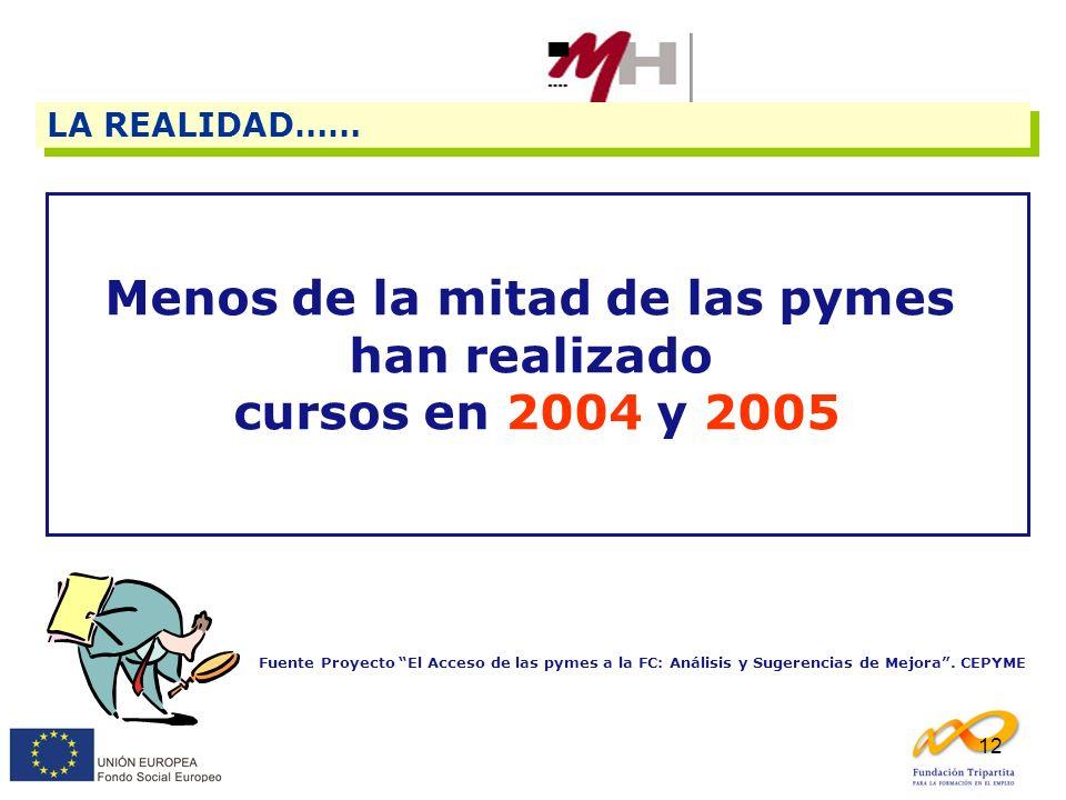 12 LA REALIDAD…… Menos de la mitad de las pymes han realizado cursos en 2004 y 2005 Fuente Proyecto El Acceso de las pymes a la FC: Análisis y Sugeren
