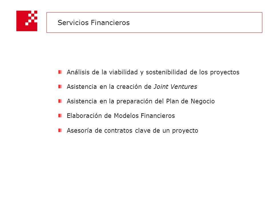 Análisis de la viabilidad y sostenibilidad de los proyectos Asistencia en la creación de Joint Ventures Asistencia en la preparación del Plan de Negocio Elaboración de Modelos Financieros Asesoría de contratos clave de un proyecto Servicios Financieros