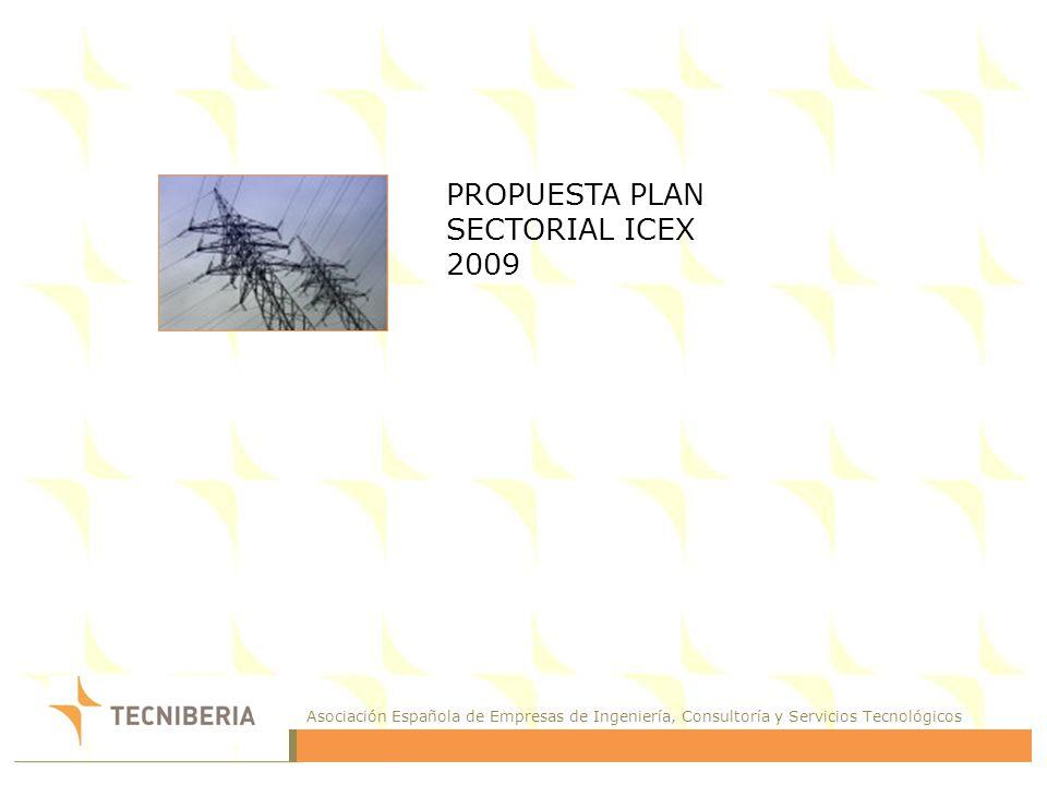 Asociación Española de Empresas de Ingeniería, Consultoría y Servicios Tecnológicos PROPUESTA PLAN SECTORIAL ICEX 2009