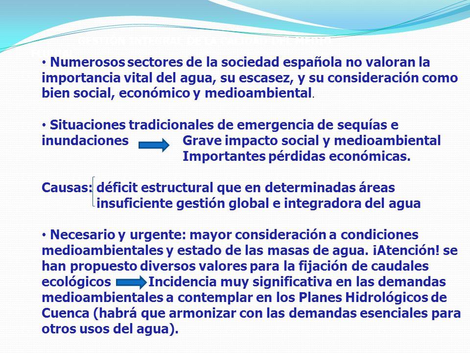 GESTIÓN INTEGRAL DE LA CALIDAD DEL MEDIO FLUVIAL Numerosos sectores de la sociedad española no valoran la importancia vital del agua, su escasez, y su consideración como bien social, económico y medioambiental.