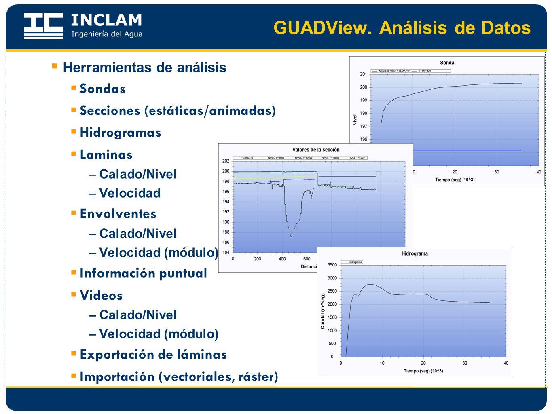 GUADView. Análisis de Datos Herramientas de análisis Sondas Secciones (estáticas/animadas) Hidrogramas Laminas – Calado/Nivel – Velocidad Envolventes