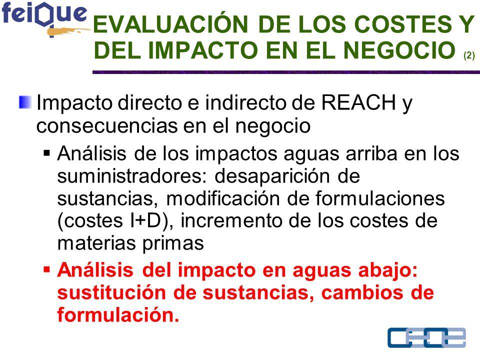 EVALUACIÓN DE LOS COSTES Y DEL IMPACTO EN EL NEGOCIO (2) Impacto directo e indirecto de REACH y consecuencias en el negocio Análisis de los impactos aguas arriba en los suministradores: desaparición de sustancias, modificación de formulaciones (costes I+D), incremento de los costes de materias primas Análisis del impacto en aguas abajo: sustitución de sustancias, cambios de formulación.