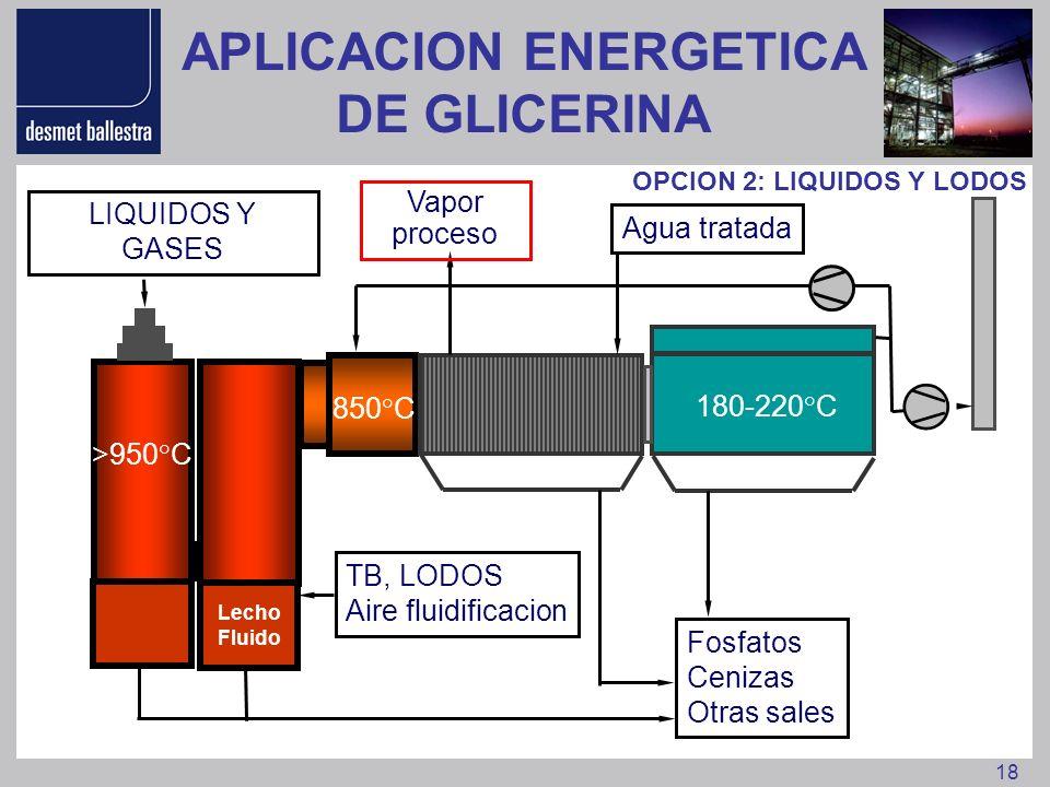 18 >950°C 850°C 180-220°C TB, LODOS Aire fluidificacion OPCION 2: LIQUIDOS Y LODOS Fosfatos Cenizas Otras sales LIQUIDOS Y GASES Agua tratada Vapor pr