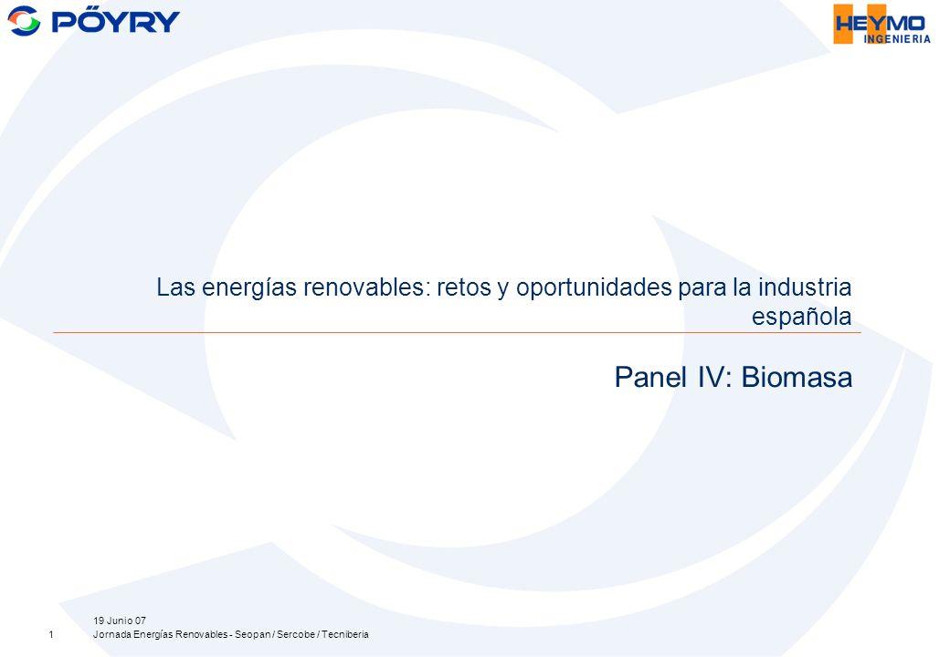 19 Junio 07 Jornada Energías Renovables - Seopan / Sercobe / Tecniberia1 Panel IV: Biomasa Las energías renovables: retos y oportunidades para la industria española