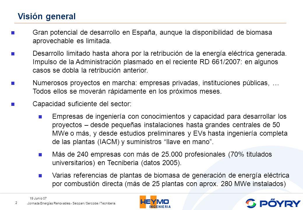 Jornada Energías Renovables - Seopan / Sercobe / Tecniberia 19 Junio 07 3 En el corto plazo: plantas de generación de energía térmica, eléctrica o ambas (cogeneración) por combustión directa de la biomasa.