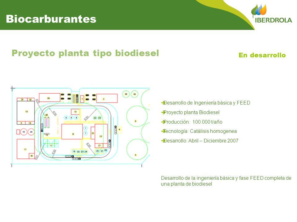 Desarrollo de Ingeniería básica y FEED Proyecto planta Biodiesel Producción: 100.000 t/año Tecnología: Catálisis homogenea Desarrollo: Abril – Diciembre 2007 Proyecto planta tipo biodiesel En desarrollo Biocarburantes Desarrollo de la ingeniería básica y fase FEED completa de una planta de biodiesel