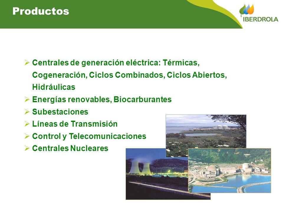 Productos Centrales de generación eléctrica: Térmicas, Cogeneración, Ciclos Combinados, Ciclos Abiertos, Hidráulicas Energías renovables, Biocarburantes Subestaciones Líneas de Transmisión Control y Telecomunicaciones Centrales Nucleares