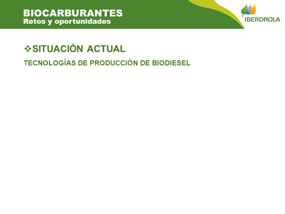 SITUACIÓN ACTUAL TECNOLOGÍAS DE PRODUCCIÓN DE BIODIESEL BIOCARBURANTES Retos y oportunidades