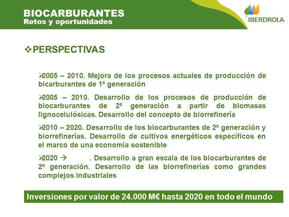PERSPECTIVAS 2005 – 2010. Mejora de los procesos actuales de producción de bicarburantes de 1ª generación 2005 – 2010. Desarrollo de los procesos de p