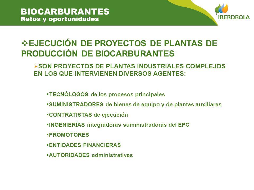 EJECUCIÓN DE PROYECTOS DE PLANTAS DE PRODUCCIÓN DE BIOCARBURANTES SON PROYECTOS DE PLANTAS INDUSTRIALES COMPLEJOS EN LOS QUE INTERVIENEN DIVERSOS AGENTES: TECNÓLOGOS de los procesos principales SUMINISTRADORES de bienes de equipo y de plantas auxiliares CONTRATISTAS de ejecución INGENIERÍAS integradoras suministradoras del EPC PROMOTORES ENTIDADES FINANCIERAS AUTORIDADES administrativas BIOCARBURANTES Retos y oportunidades