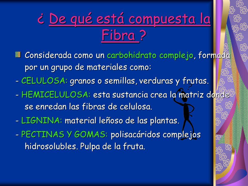 ¿ Qué es la Fibra? ¿ Qué es la Fibra? Nutricionalmente es material no digerible obtenido de los alimentos de origen vegetal. El A. Digestivo no puede