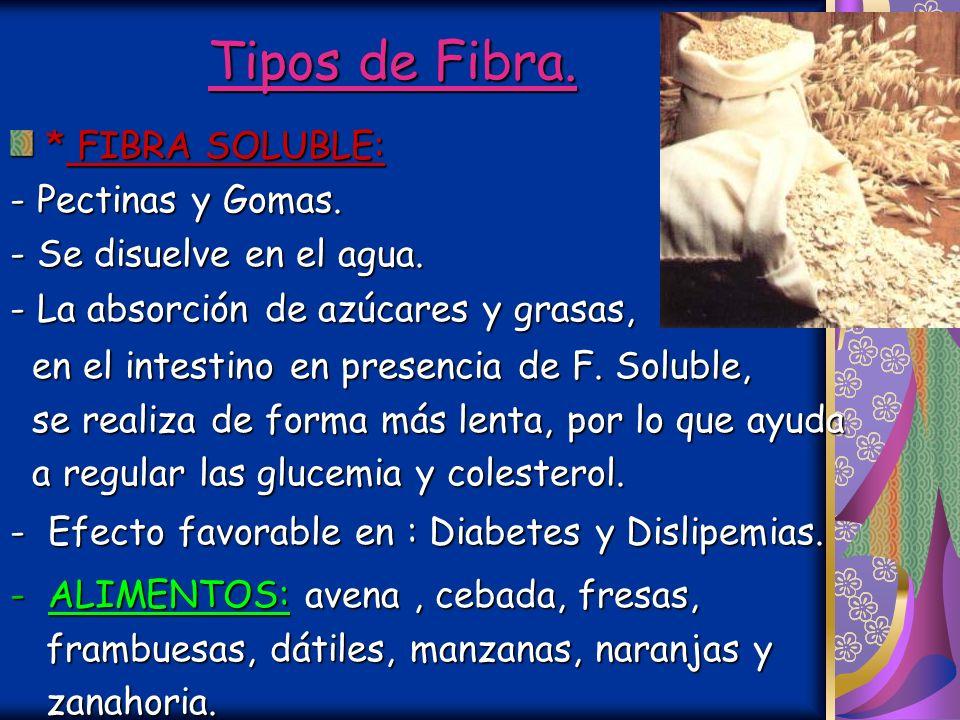 Tipos de Fibra. Por sus propiedades físicas y efecto fisiológico: * FIBRA INSOLUBLE: - Celulosa, Hemicelulosa y Lignina.. - No puede disolverse en el