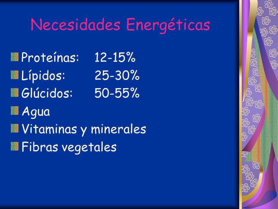 Necesidades energéticas 1-3 años:1360 Kcal./día 4-6 años:1830 Kcal./día 7-9 años:2190 Kcal./día 10-12 años:2350 - 2600 Kcal./día 13-19 años:2400 - 300