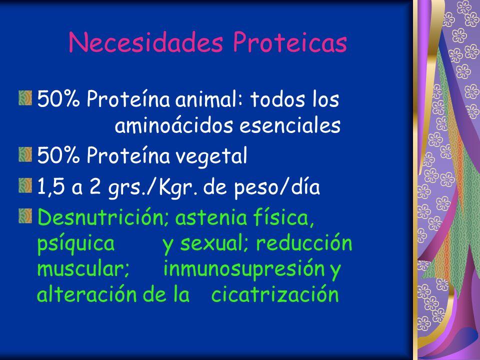 Necesidades Proteicas 50% Proteína animal: todos los aminoácidos esenciales 50% Proteína vegetal 1,5 a 2 grs./Kgr.