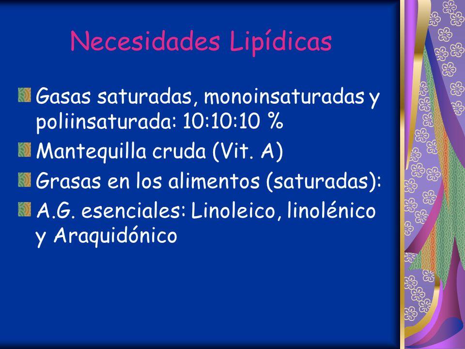 Necesidades Lipídicas Gasas saturadas, monoinsaturadas y poliinsaturada: 10:10:10 % Mantequilla cruda (Vit.