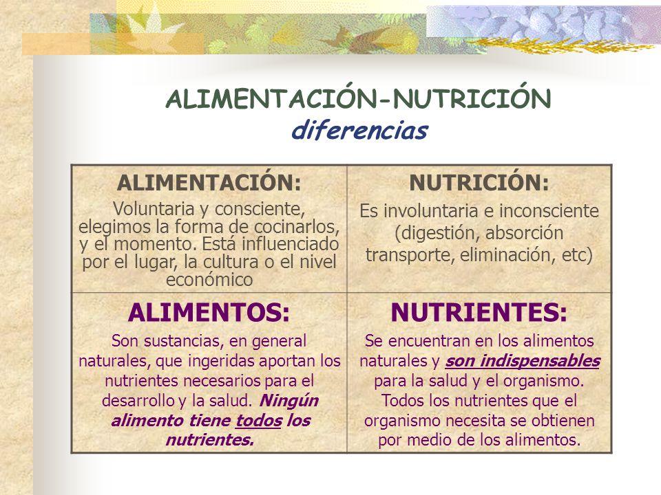ALIMENTACIÓN-NUTRICIÓN diferencias ALIMENTACIÓN: Voluntaria y consciente, elegimos la forma de cocinarlos, y el momento. Está influenciado por el luga